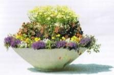 Bloemenschaal 300